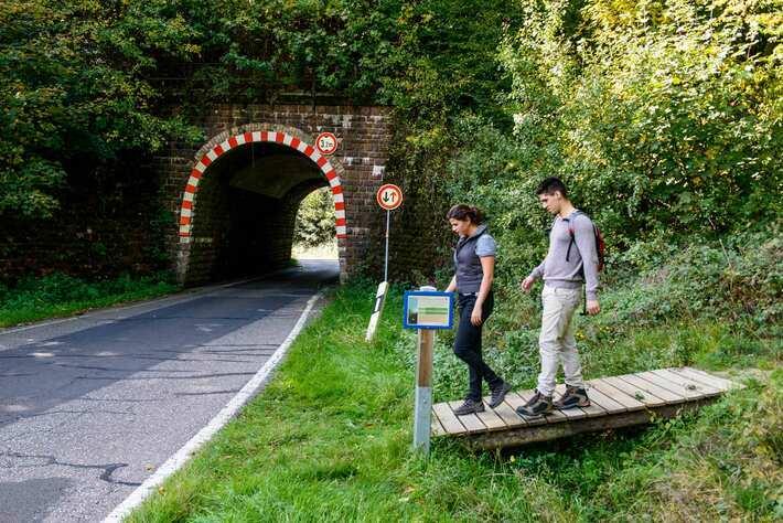 Brücke Mermicherhof (3)